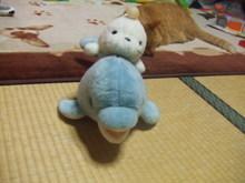 2006_02250026_2