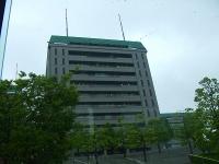 2008_05290019